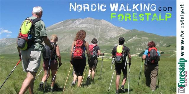 Scopri le attrazioni di Sirolo - Forestalp Società Cooperativa e Tour Operator