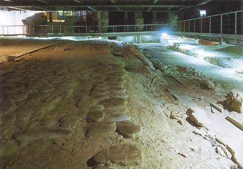 Scopri le attrazioni di Area archeologica e Museo La Fenice