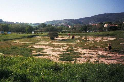 Scopri le attrazioni di Sirolo (Località dei Pini) – Necropoli picena e Tomba della Principessa