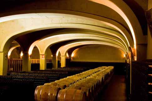 Scopri                                      I vini delle Marche