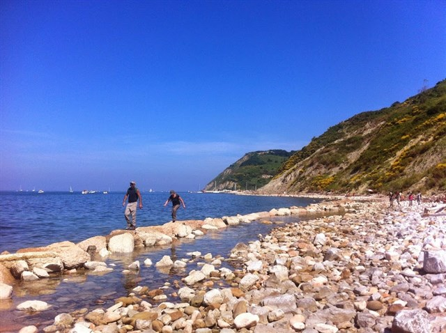 Discover the holiday package: By boat at sunset with the biologist in the Monte San Bartolo Park - Il Ponticello Trekking