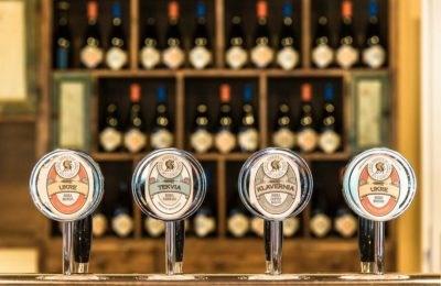 Scopri l'itinerario: Le strade della birra