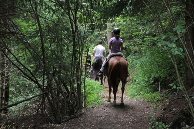 passeggiate-cavallo