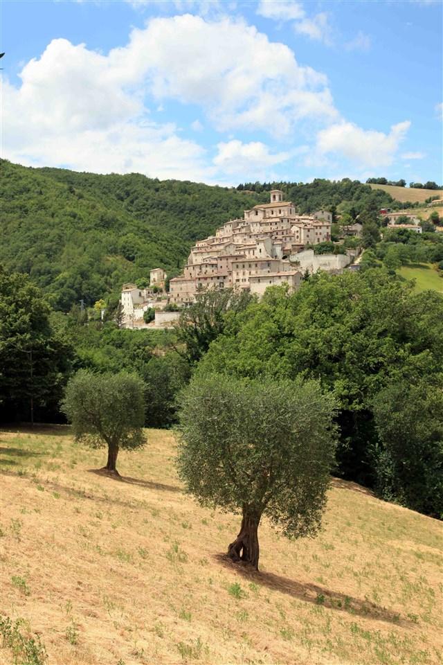 Arcevia - Castello Palazzo
