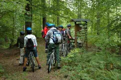 Scopri                                      Itinerari Cicloturistici