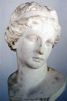Testa di Venere, da Cupra Marittima
