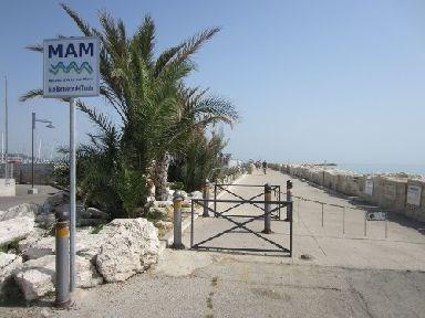 Scopri le attrazioni di MAM - Museo d'Arte sul Mare
