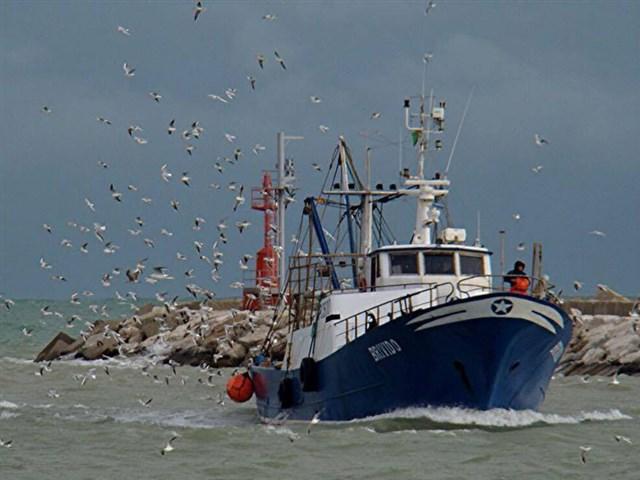 Pescaturismo CEA Monteprandone