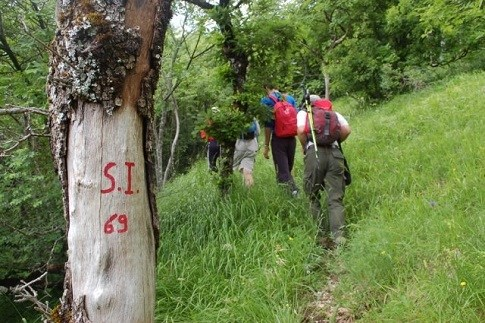 Scopri                                      Strutture ricettive dedicate al trekking