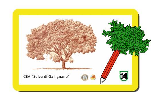 Logo CEA Gallignano