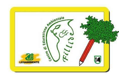Logo CEA Fillide