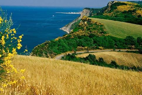 Il Paesaggio del Monte San Bartolo