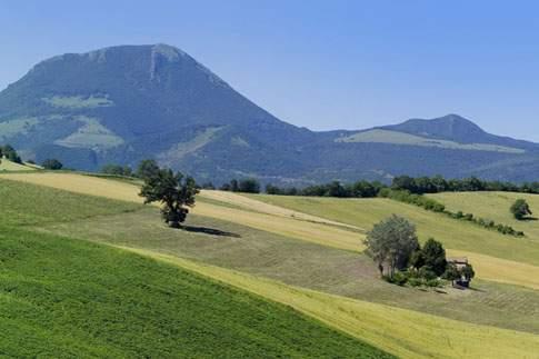 La Riserva di Monte San Vicino e del Monte Canfaito