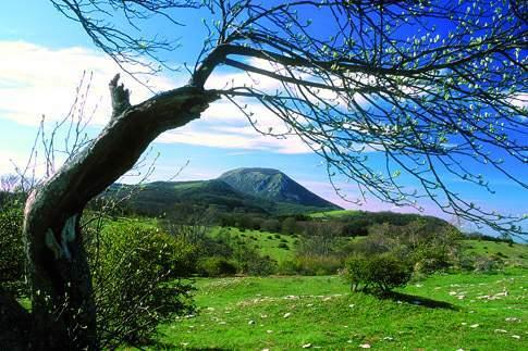Paesaggio nella Riserva Monte San Vicino e Canfaito