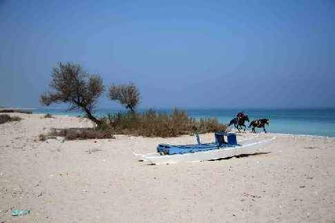 Scopri l'itinerario: Dalla Riviera delle Palme all'Appennino