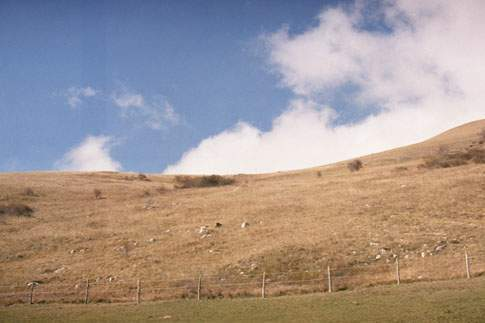 Pascolo nella Riserva Naturale Montagna di Torricchio