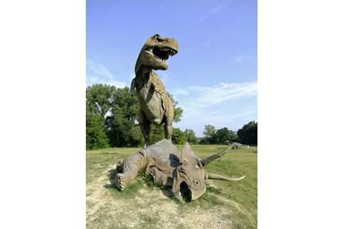Un Tirannosauro e un Triceratopo