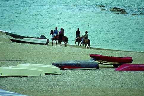 Passeggiate a cavallo lungo la spiaggia di Porto Recanati